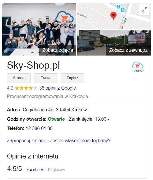 wizytowka-firmy-w-internecie-skyshop