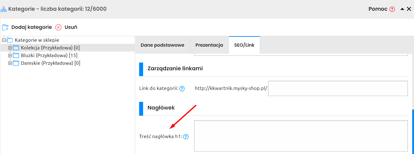 naglowek-h1-sky-shop-seo